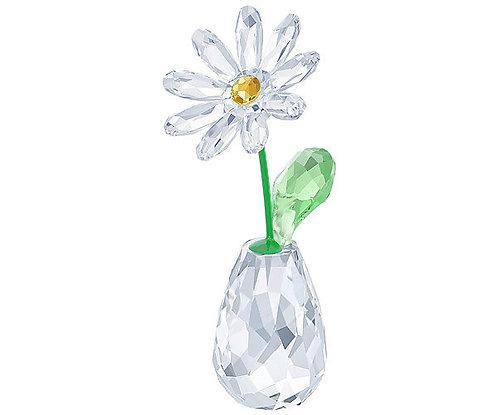 Swarovski Flower Dreams - Daisy