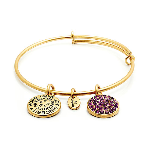 Chrysalis Good Fortune February Amethyst Birthstone Crystal Expandable Bangle