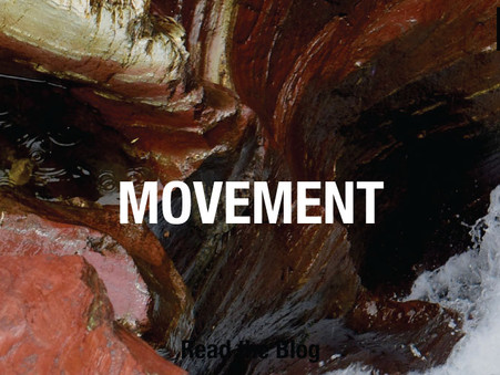 The Why V.2 Movement
