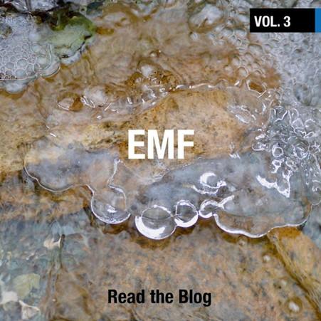 The Why V.3 EMF