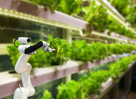 Can Indoor Vertical Farming Deliver Exceptional Returns for the Planet, Consumers, and Investors?