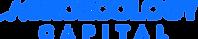 Logo AEC - Blue.png