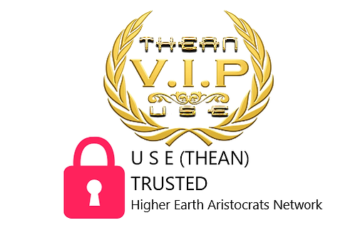 VIP THEAN NETWORK GROUP.png