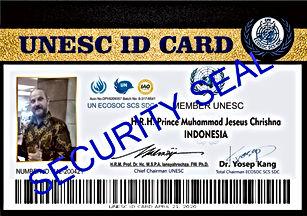 UN%20ECOSOC%20SCS%20SDC_edited.jpg