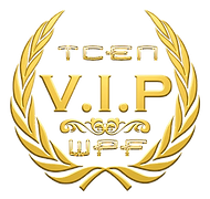 VIP NETWORK.png