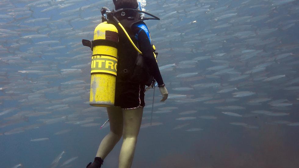 PADI Advanced Open Water + Nitrox Certification