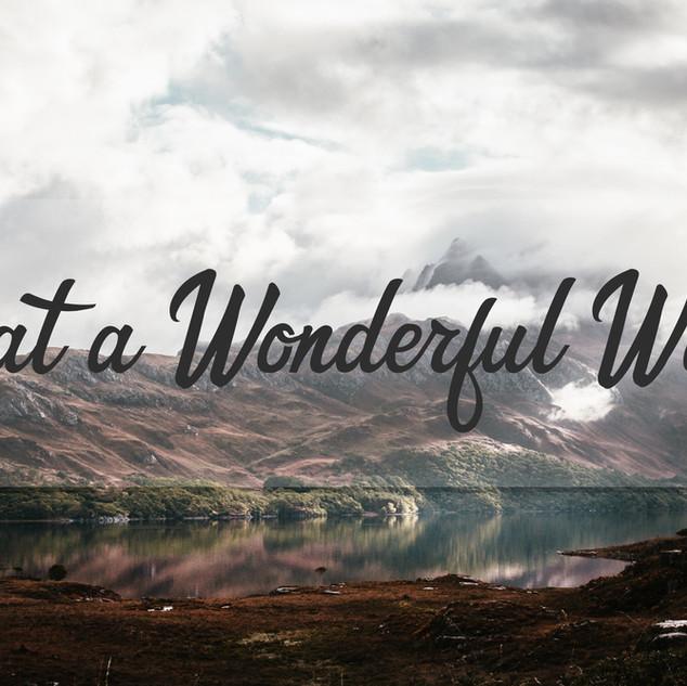 What a Wonderful World: Signs & Wonders - Ken Grenfell