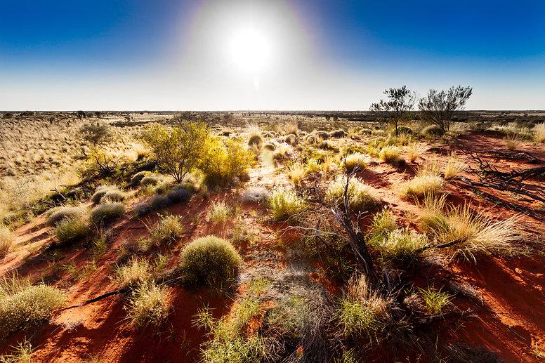 Outback Landscape.jpg