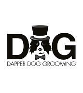 D D logo.png