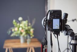 """""""Blumen – 1000 gute Gründe"""" Foto-Workshops"""