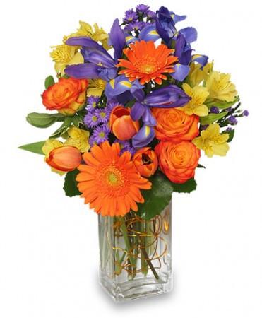 Rhodes Talik Floral