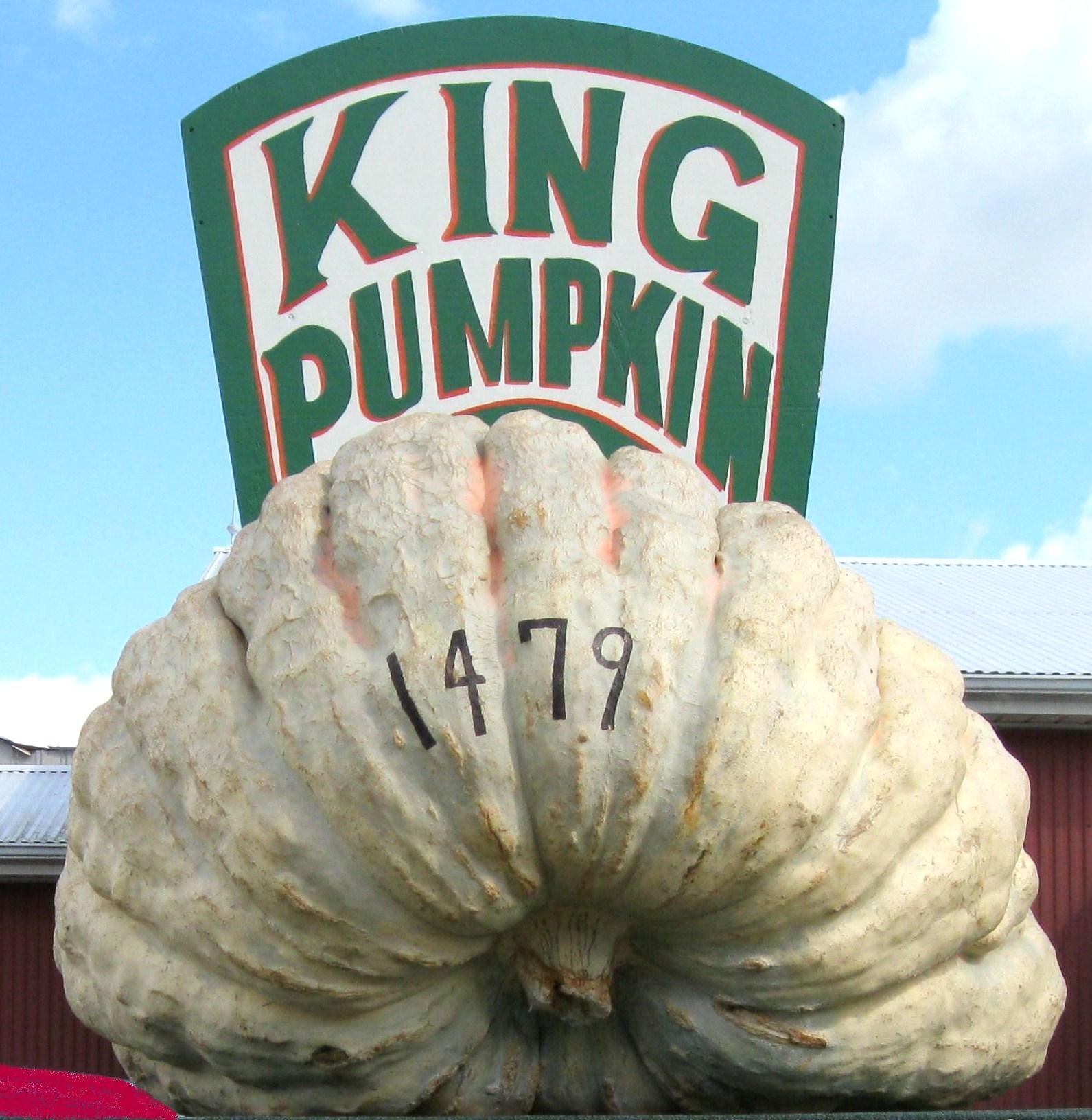 Barnesville Pumpkin Fest