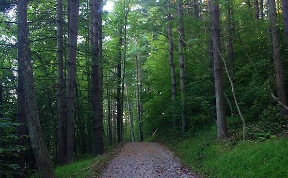 Piedmont Trails.jpg
