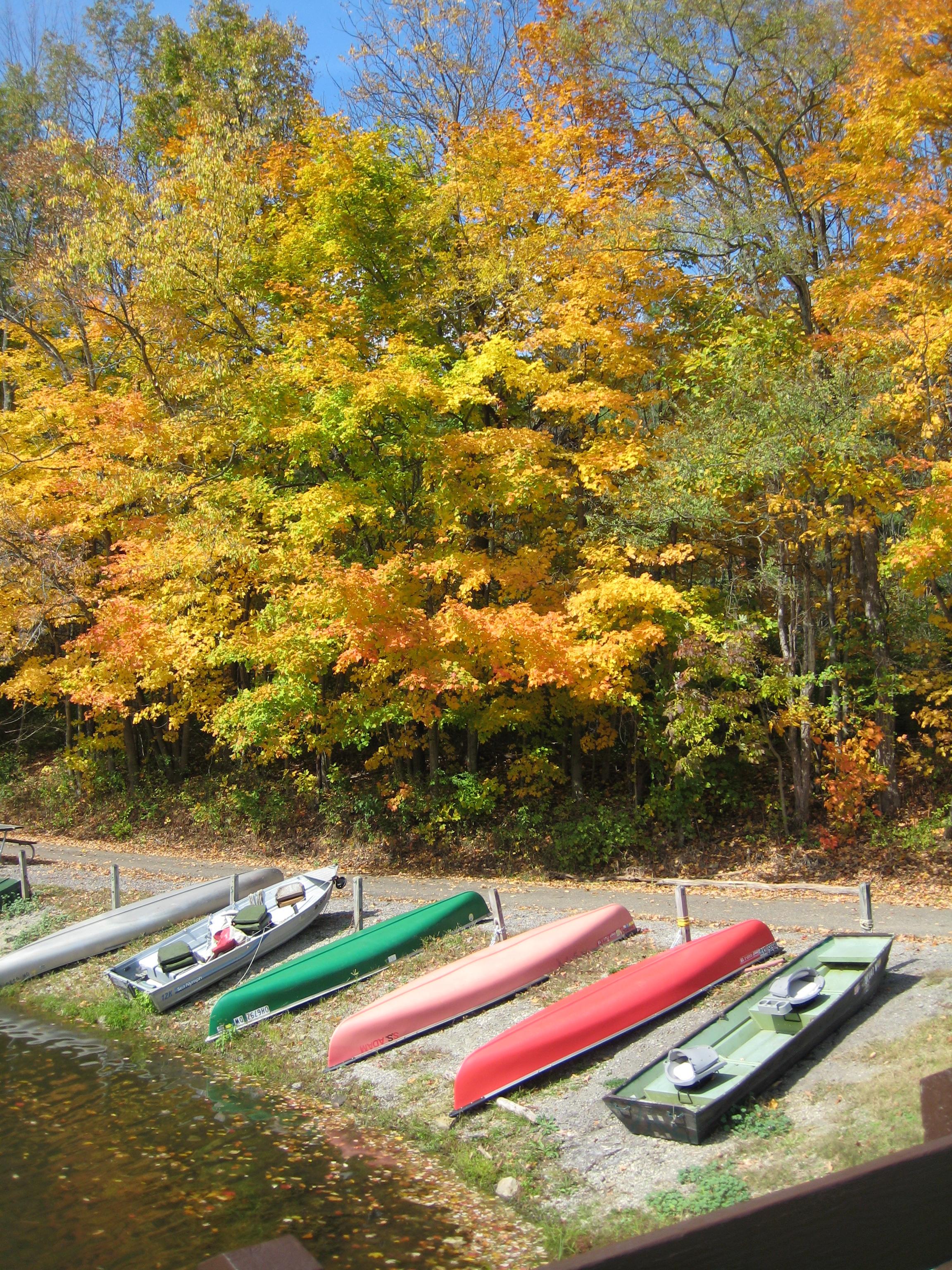 Canoes at Barkcamp