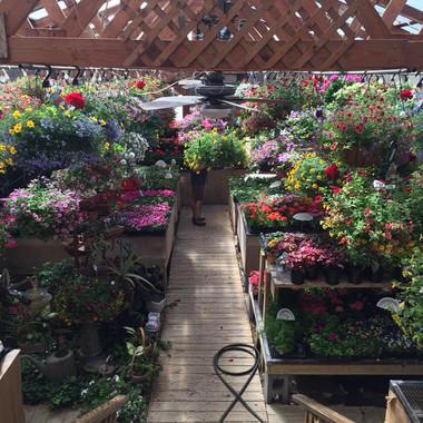 Shadyside Flower Shop