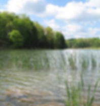 Piedmont Lake.jpg