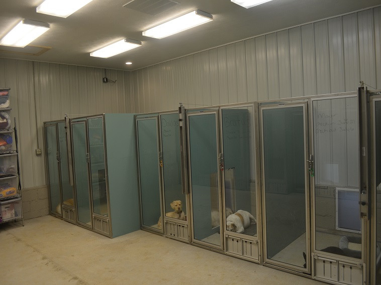 The Dog Wash & Grooming