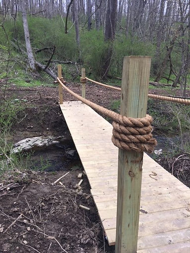 Newlin Falls Nature Trail.jpg