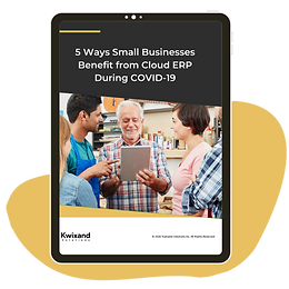 5 Ways Small Businesses Benefit from Cloud ERP During COVID-19