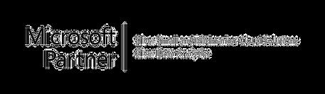 Certified Silver Microsoft Partner Logo