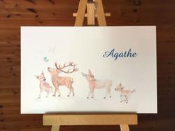 Faire part de naissance Agathe