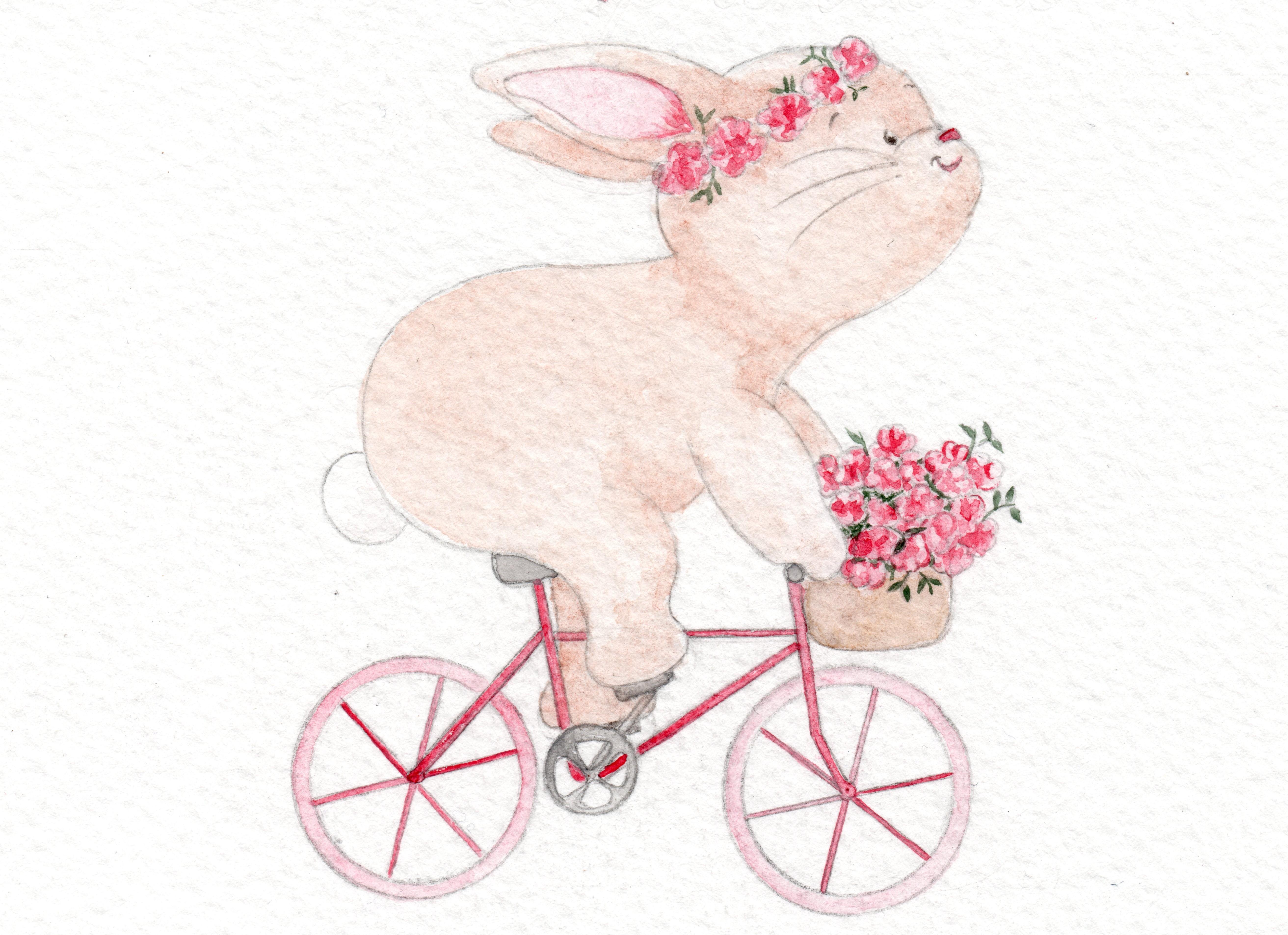 Lapine_vélo