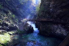 Bridge Over River _edited.jpg