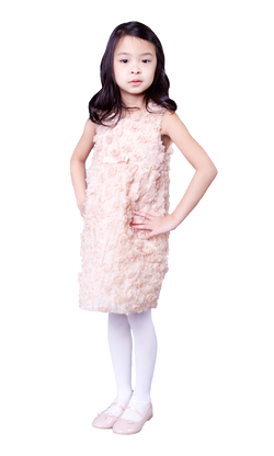Evelyn Dress
