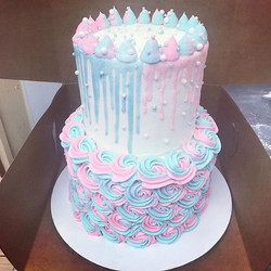 Gender reveal for twins! ._._._._