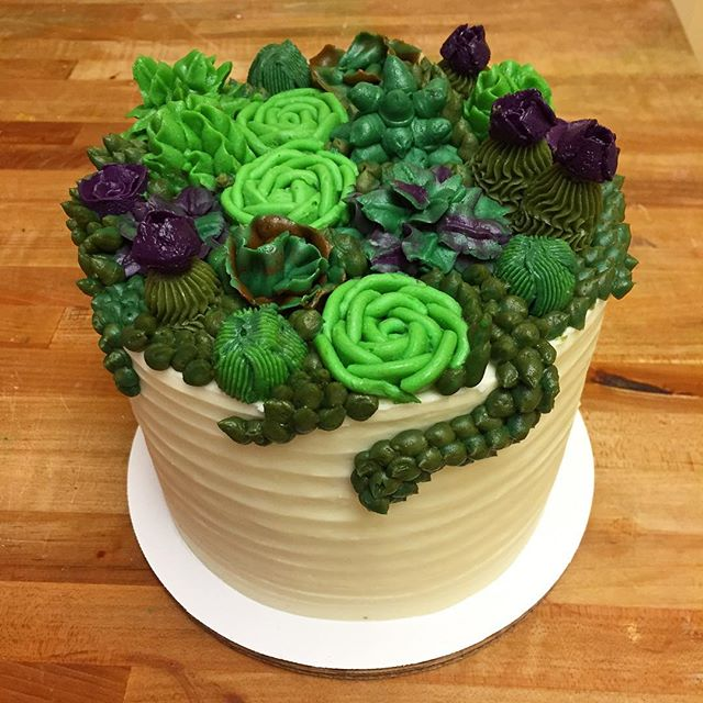 Succulents! #goldiesgoodiesbakery #succlents #custom #cake #blueberrylemon #birthday