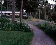 MartinHealy_Helsinki(Tapiola)_4_2015.jpg