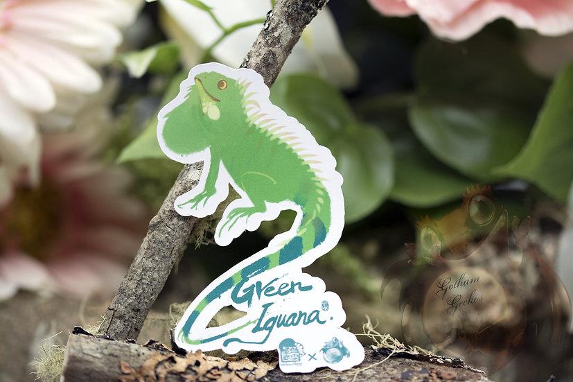 Painted Green Iguana