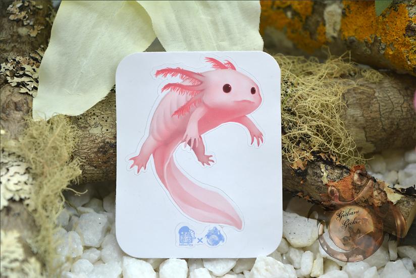 Pink Axolotl
