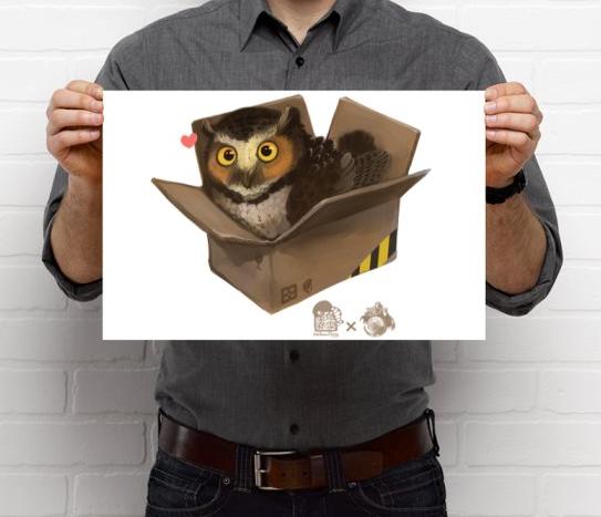 Owl in a Box