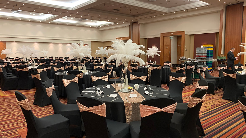Chair Cover & Sequin Band