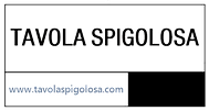 logo%20TS_edited.png