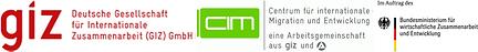 Logos GIZ.png