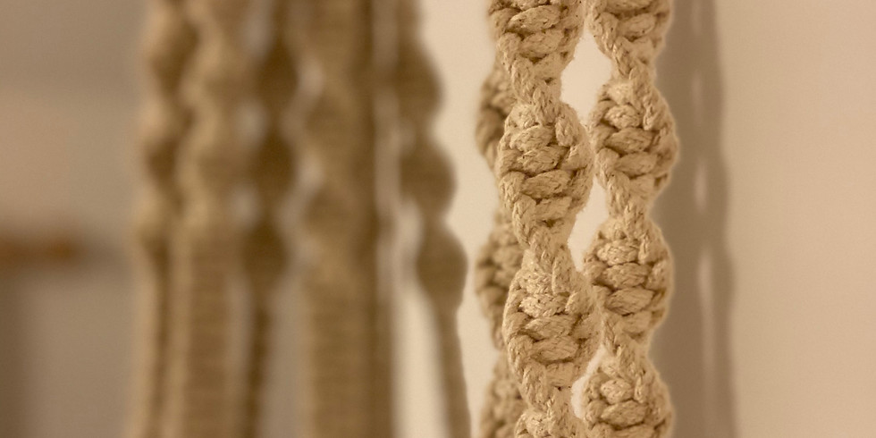 Cotton Lily Macrame Plant Hanger Workshop at The Flower Mill