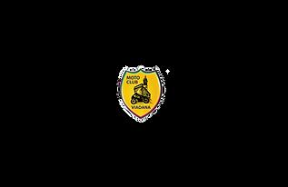 logo motoclub viadana.png