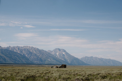 Visiting Yellowstone National Park in a renovated 1962 Airstream Overlander, by Coviello Photo.