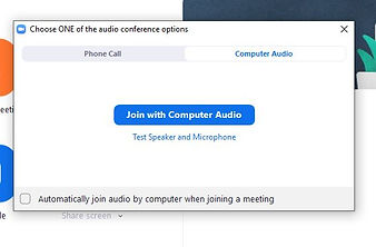 join with computer audio.JPG