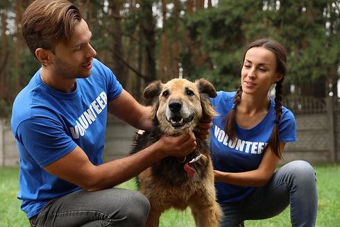 Volunteers-With-Homeless-Dog.jpg