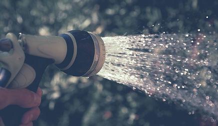 Hand Sprinkler