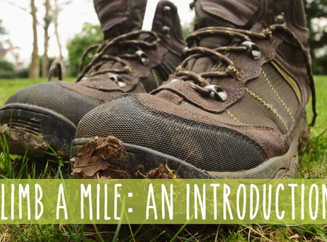 Climb a Mile: A Day in the Life of an Arborist, An Introduction