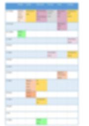 Zoom timetable July 20.jpg