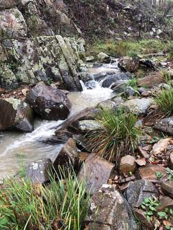 goldngoats creek 2