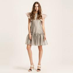 Ruffled Shiny dress