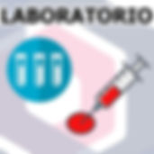 lab1%.jpg