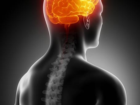 Clearing the fog: Interdisciplinary effort targets traumatic brain injuries
