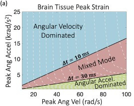 Rika Wright Carlsen's New Paper in Brain Multiphysics